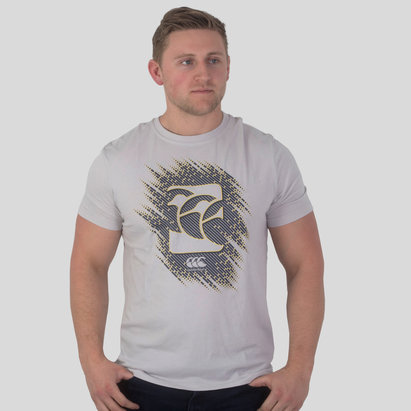 Canterbury Vapodri Graphic Training T-Shirt