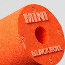 Blackroll Mini Training Roller