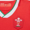 Wales Home Mini Kit 2020 2021