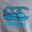 Ospreys 2018/19 Kids Team Hooded Rugby Sweat