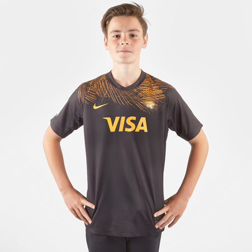 Jaguares 2019 Home Kids Super Replica Shirt