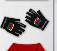 Wales Rugby Stik Mitts