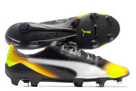 Puma evoSPEED SL II Graphic FG Football Boots