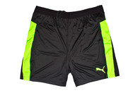 Puma IT evoTRG Training Shorts