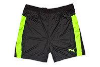 Puma IT evoTRG Training Shorts